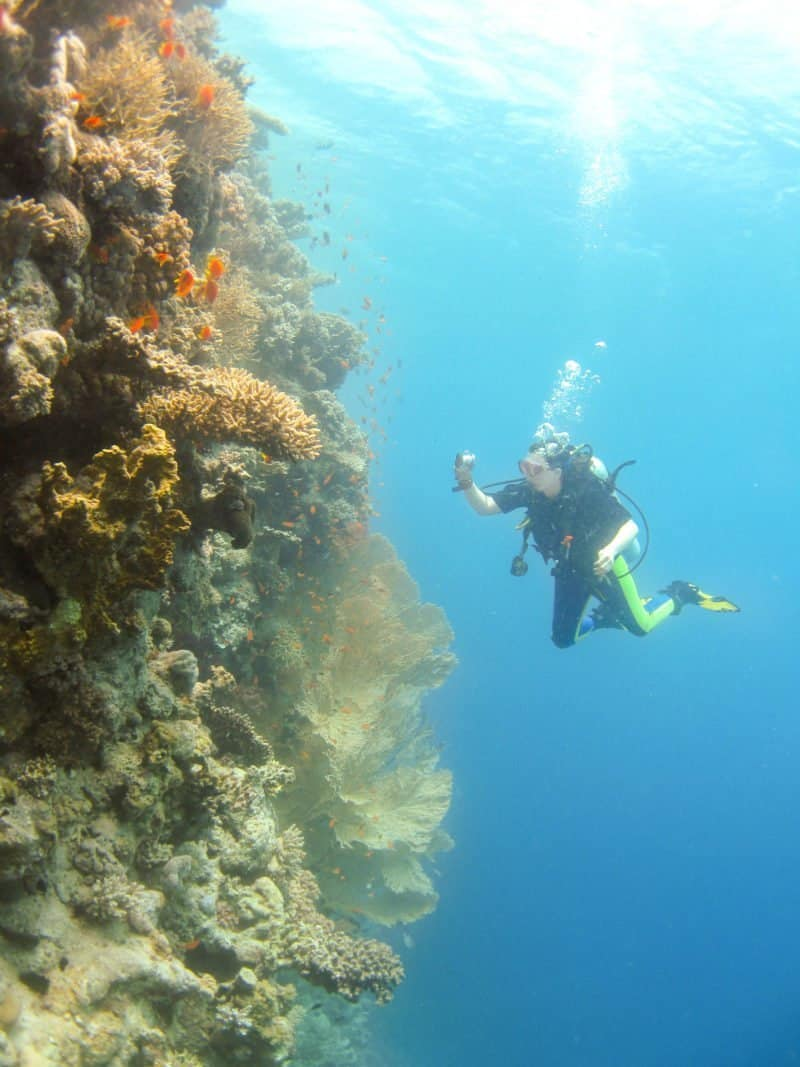 Scuba diving the Red Sea, Egypt