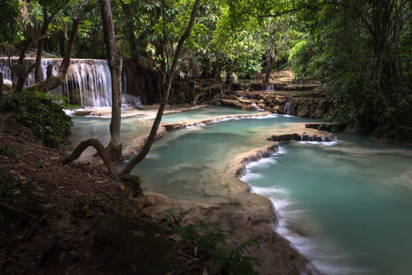 The lower tiers of Kuang Si Falls resembles the Garden of Eden in morning light.