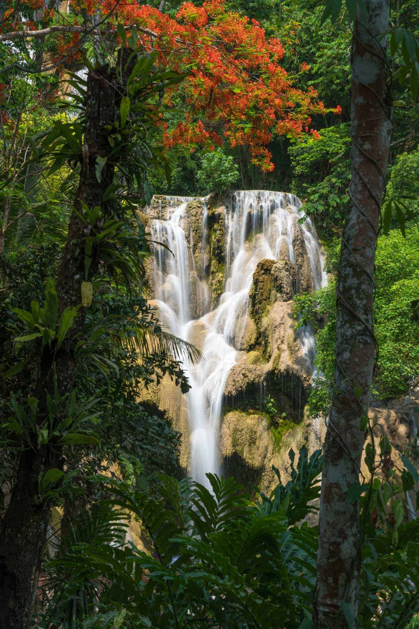 Kuang Si Falls framed by bright red blossoms and green foliage