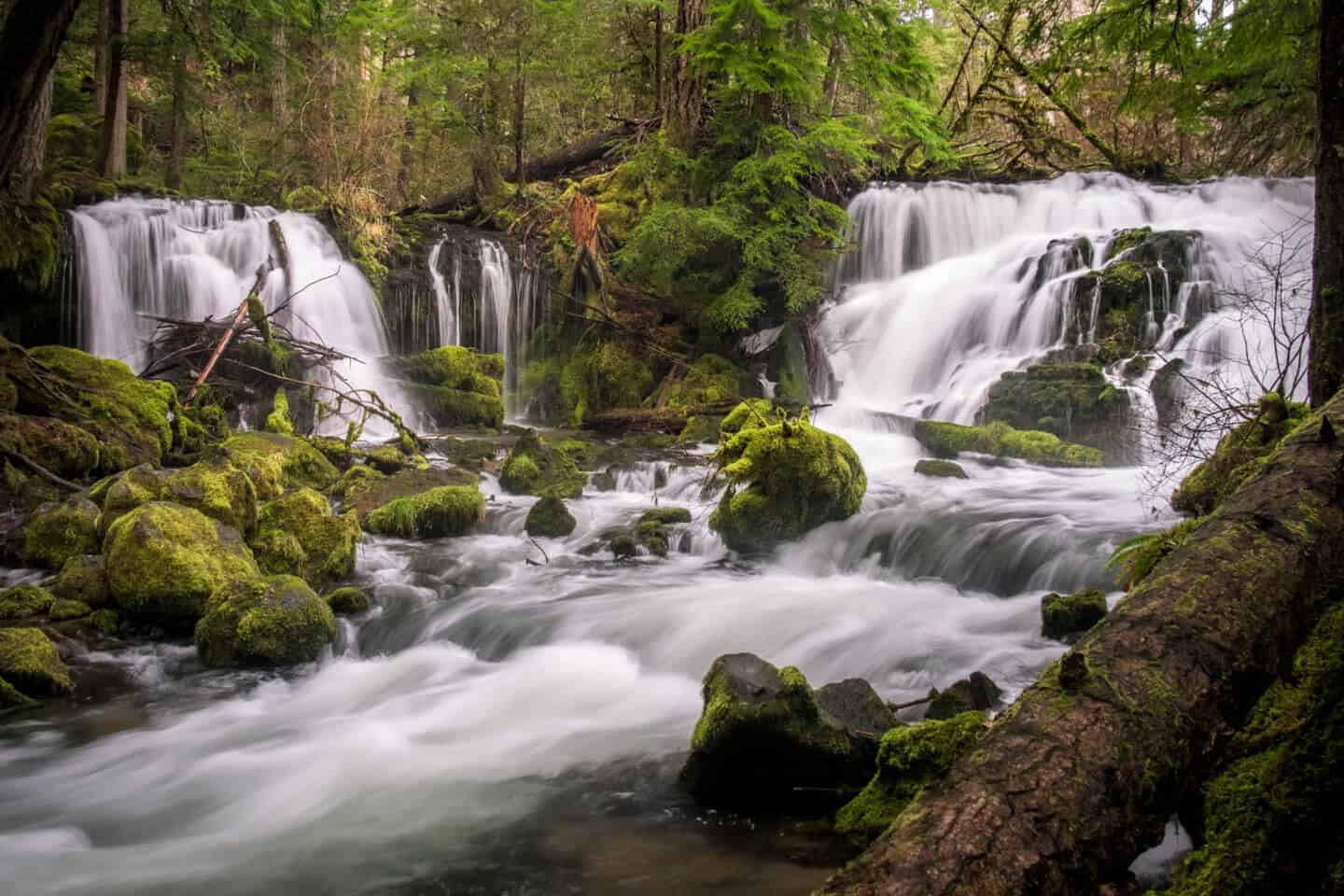 Pearsony Falls in Prospect, Oregon in a fairytale forest setting.