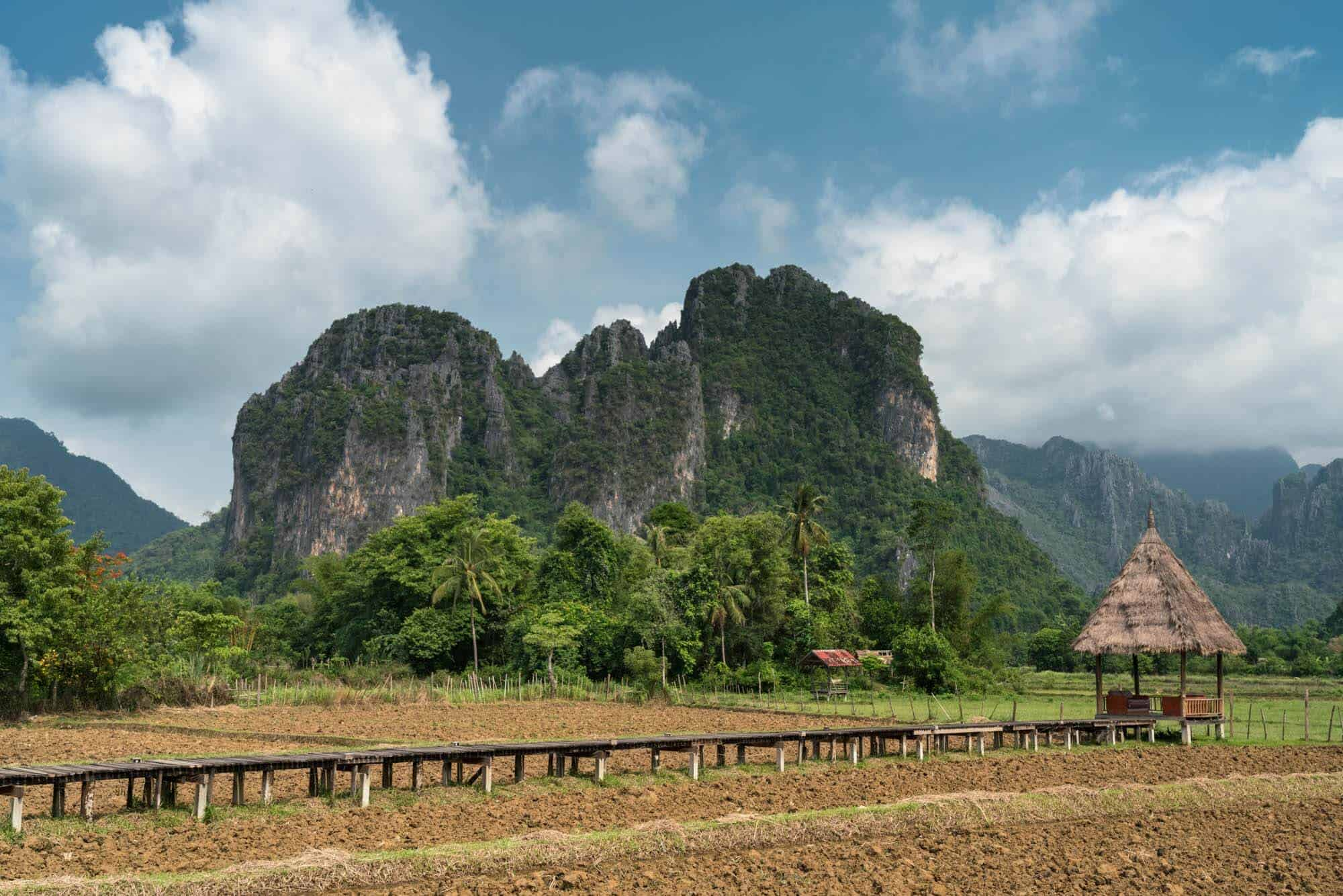 A photo of the rice fields and Vang Vieng mountains during dry season