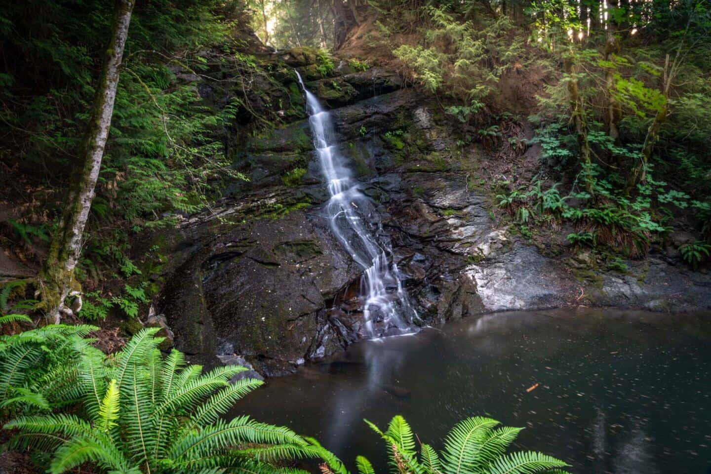 The not-so-secret waterfall at Colliery Dam Park near Nanaimo.