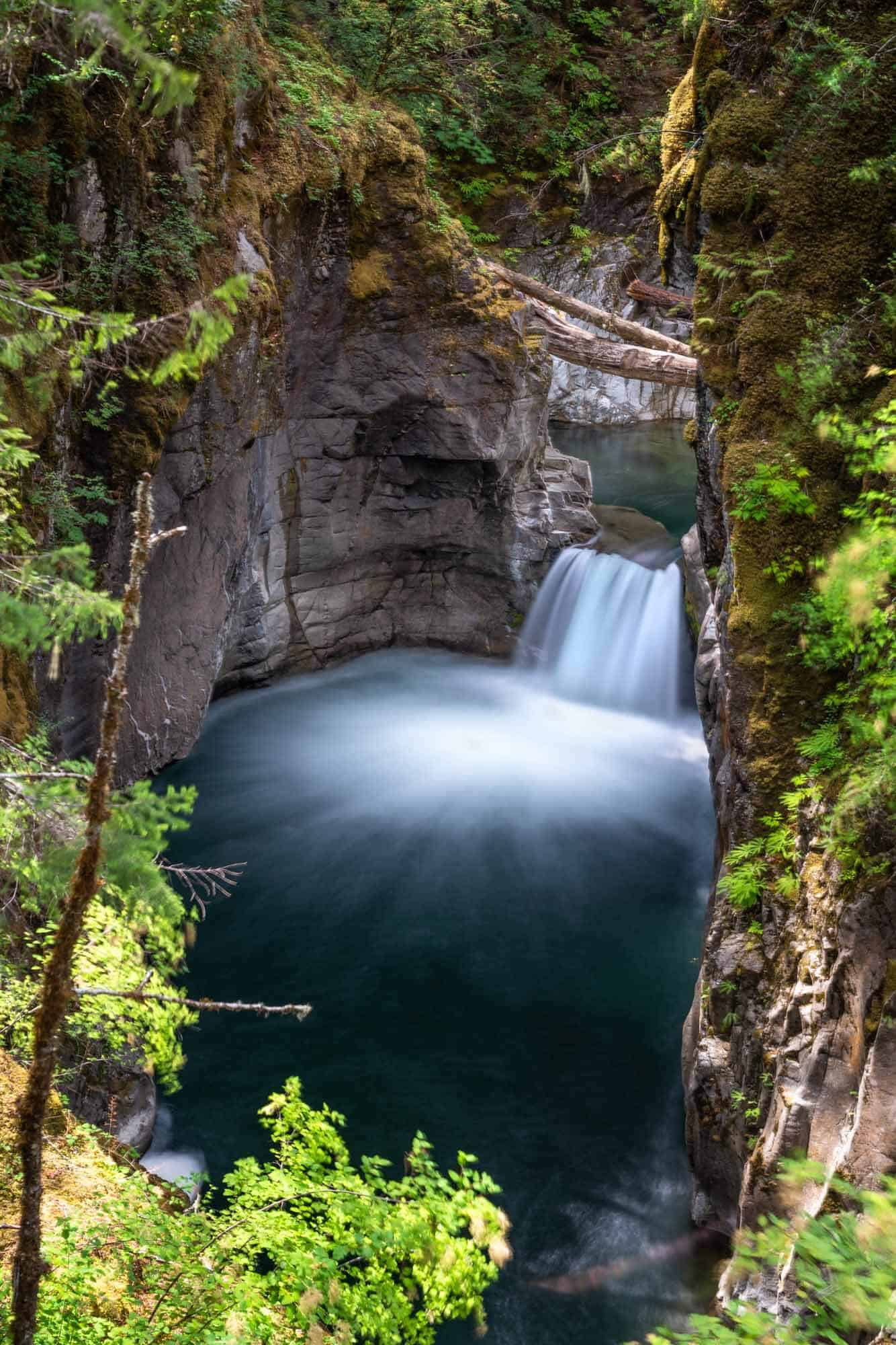 One of the many small cascades along the Little Qualicum Falls Loop