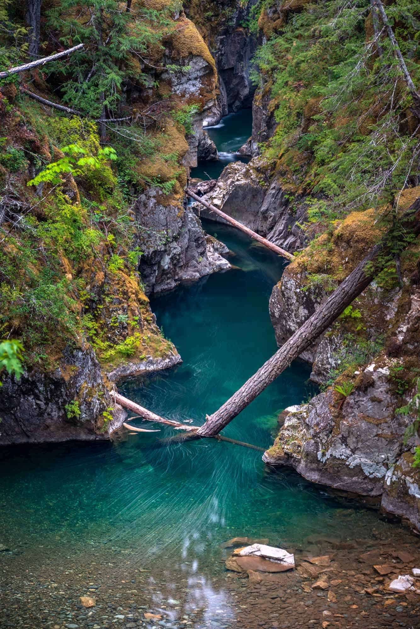 The emerald green water of Little Qualicum Falls carves its way through the gorge.