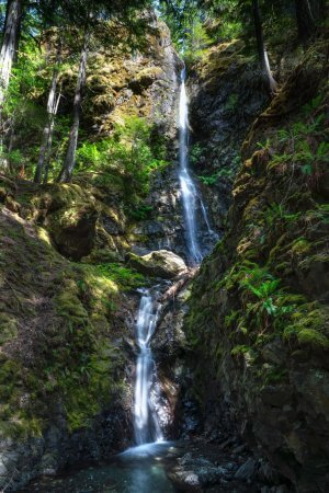 A view of Lupine Falls in Strathcona in the harsh, dappled light of day