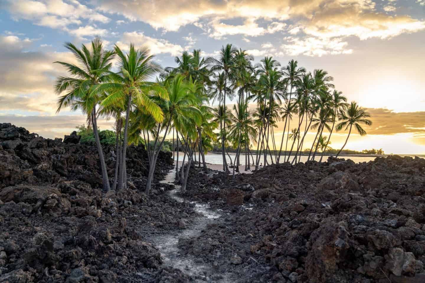 A brilliant sunset lights the lava rock scene and palm tree oasis at Makalawena Beach in Kona, Big Island.