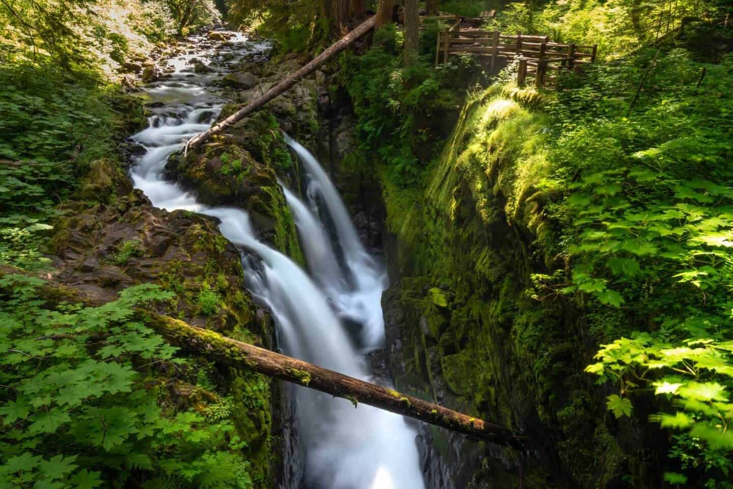 Sol Duc Falls flows through greenery in Olympic National Park