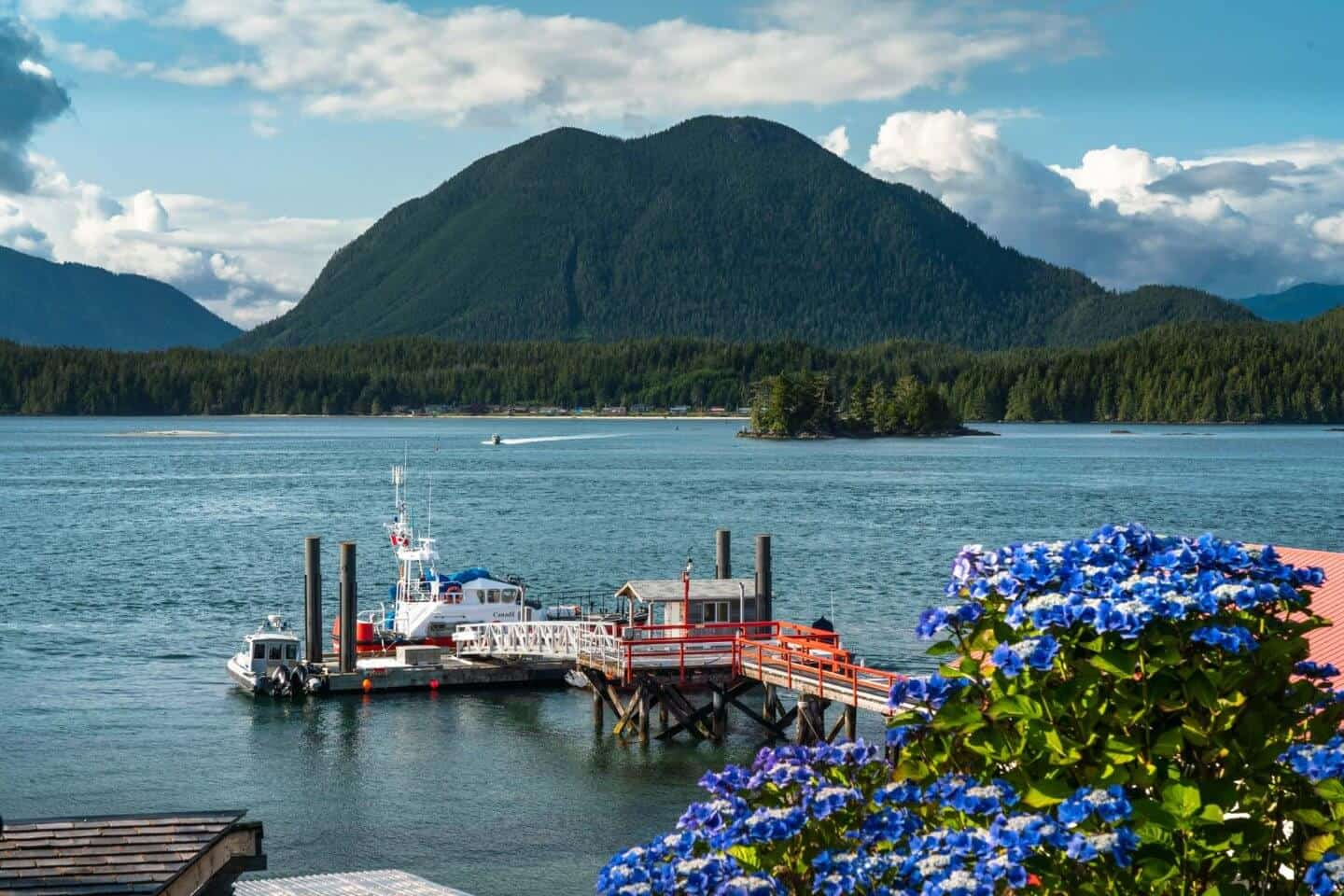 A view of the docks of Tofino with the Clayoquot Sounds behind.