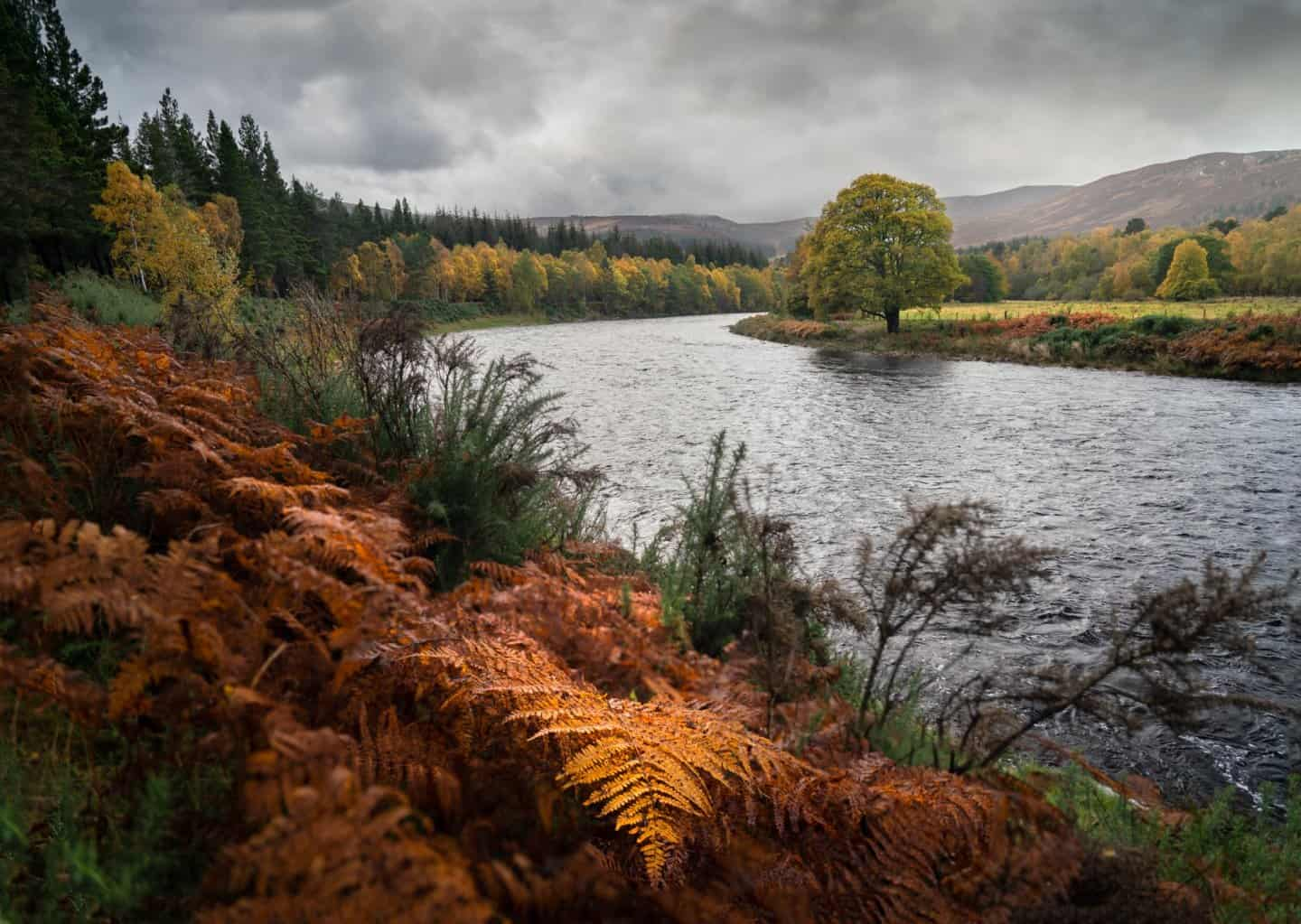 10 Days in Scotland during Autumn means incredible colors in Cairngorms National Park on a Scotland road trip.