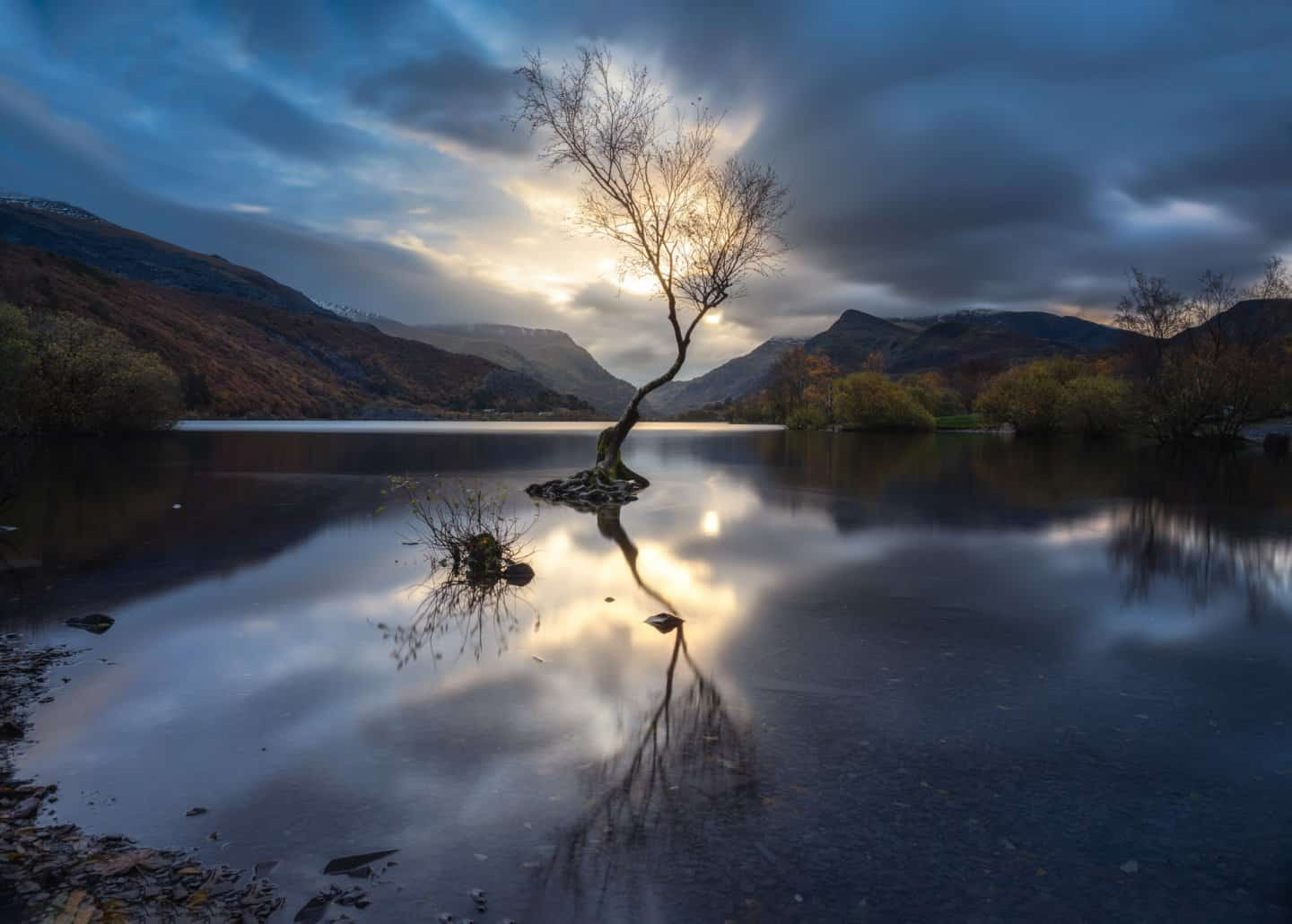 The #1 Snowdonia Photography location is the Lonely Tree of Llyn Padarn.