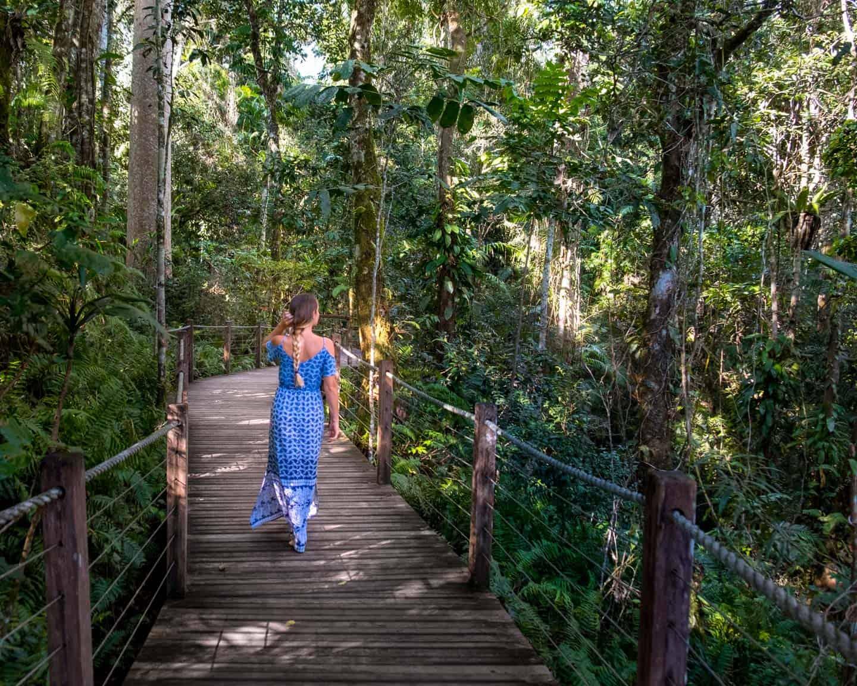 A girl taking a walk along one of the boardwalks in the Daintree Rainforest