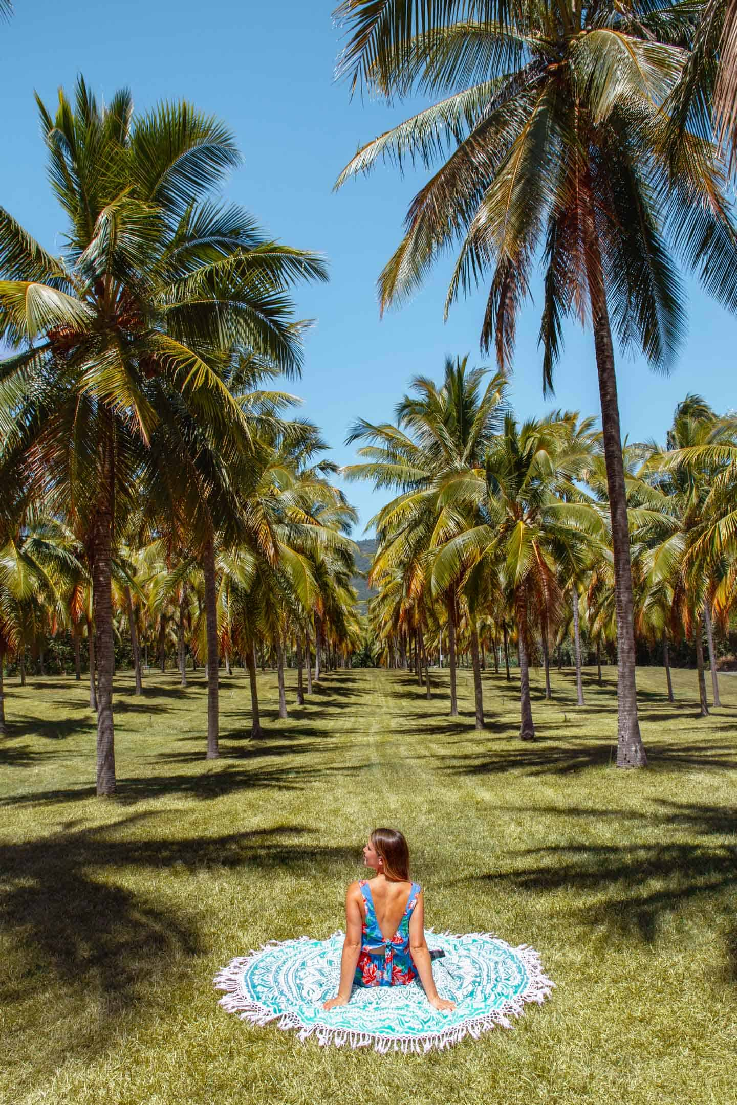 A girl on a blanket surrounded by rows of palm trees at Thala Beach Nature Resort, Port Douglas