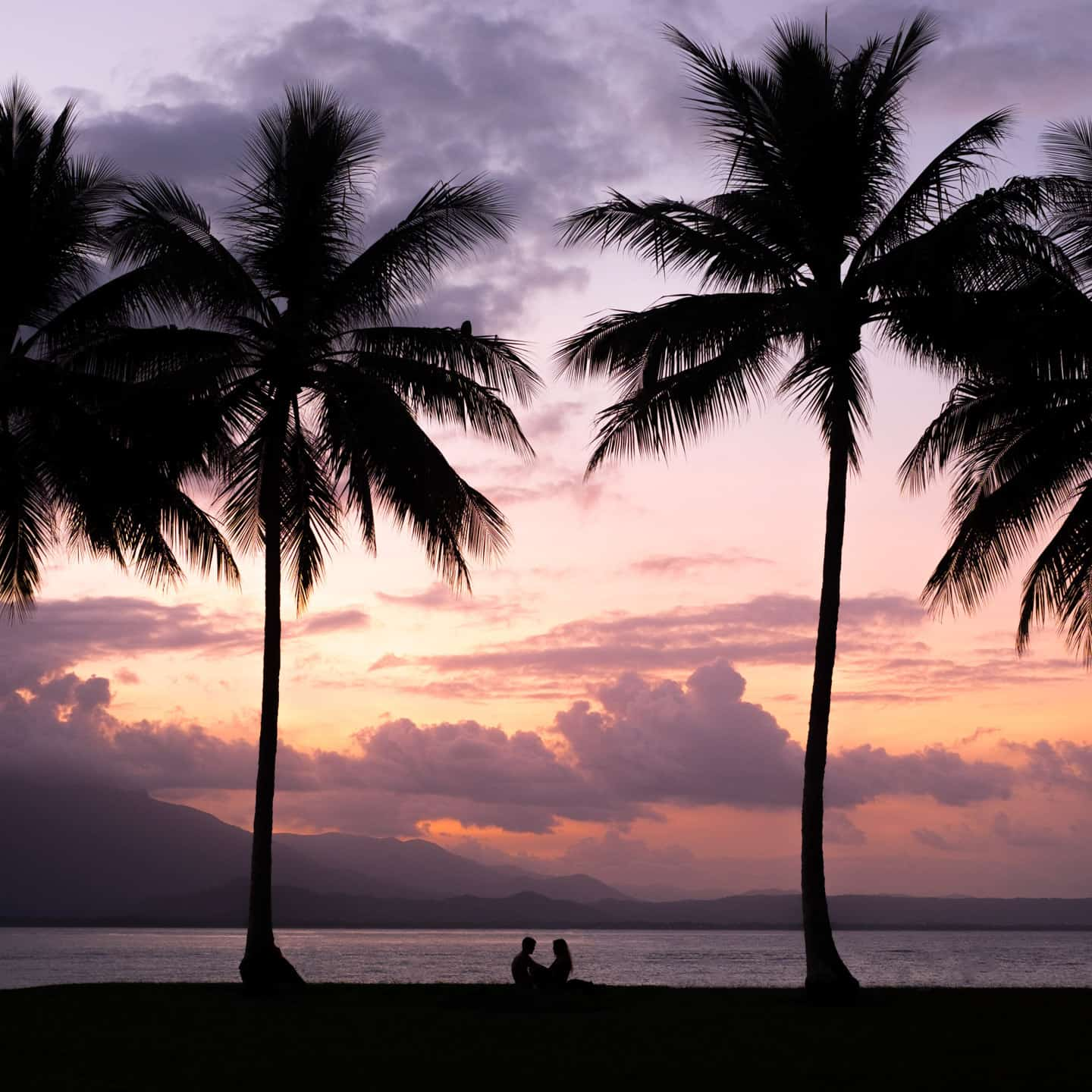 A couple framed by two palm trees at sunset in Rex Smeal Park, Port Douglas, Cairns