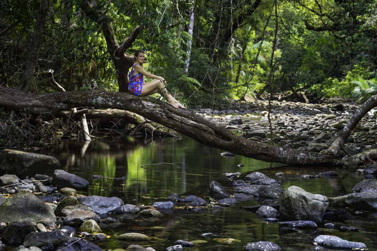 A girl sat on a fallen tree over a stream in the Daintree Rainforest