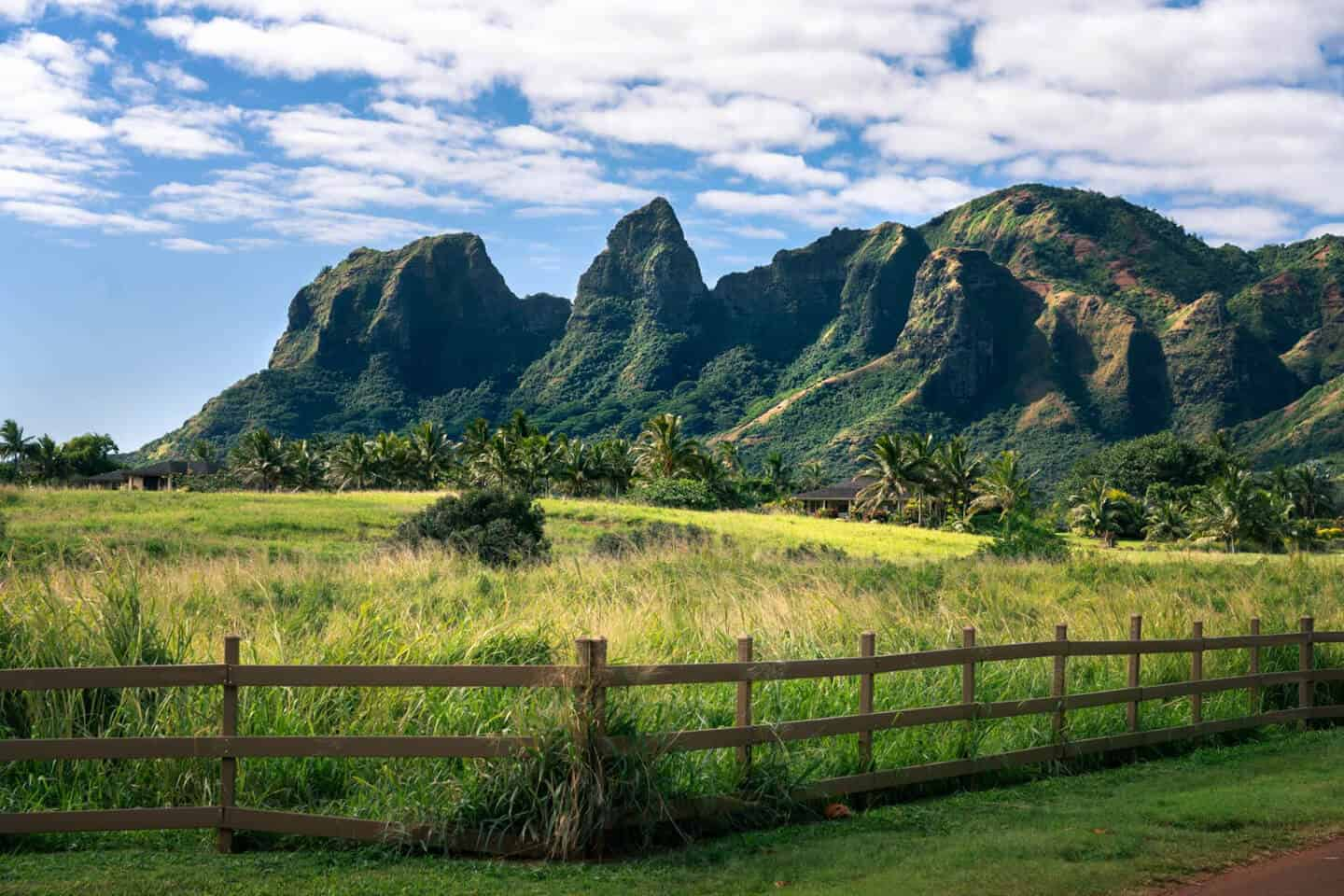 From the moment you arrive in Kauai for your 7 day itinerary, you will be immersed in natural beauty.