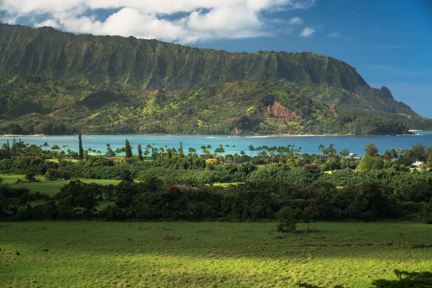 A zoomed in look at Hanalei Bay from the Hanalei Valley lookout.