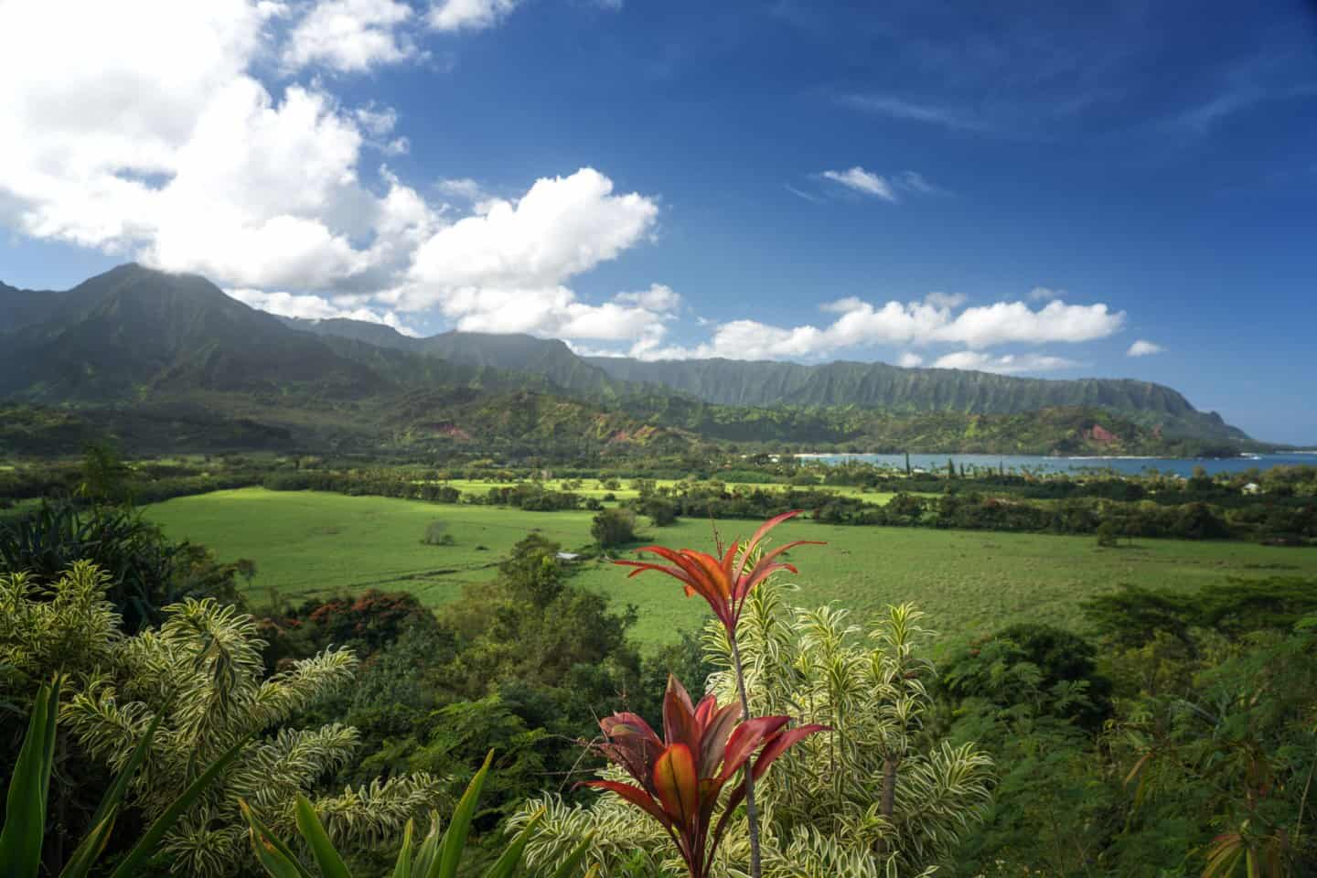 Hanalei Valley Lookout is one of the best views in Kauai, and makes for amazing Kauai landscape photography.