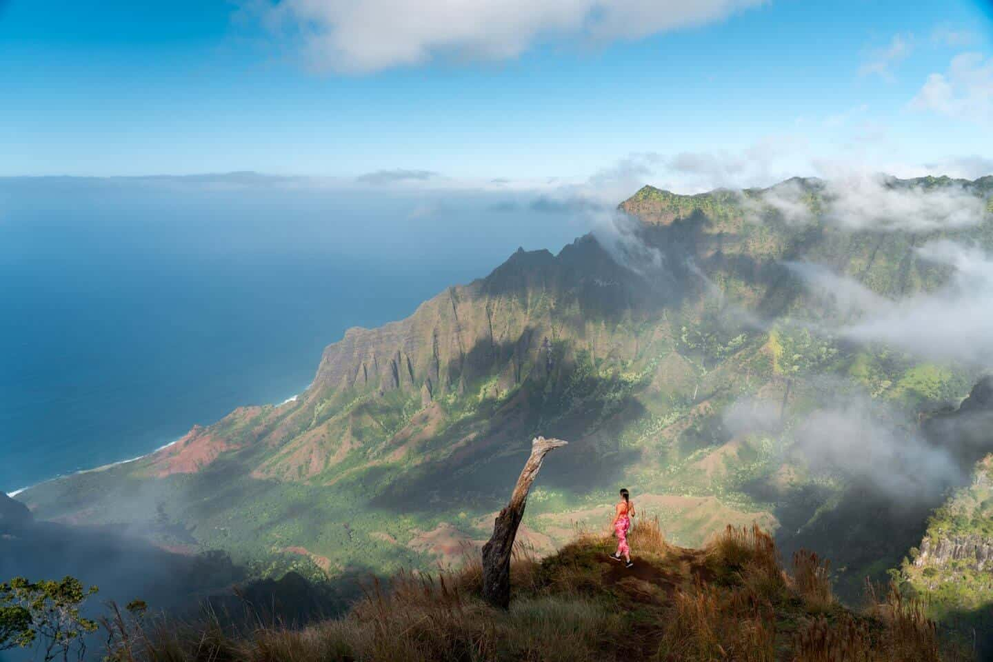 Gazing out over the Kalalau Valley on an atmospheric evening on the Kalepa Ridge Trail in Kauai.