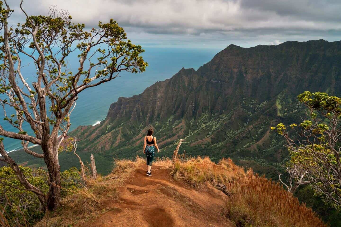 Another viewpoint on the Kalepa Ridge Trail Kauai.