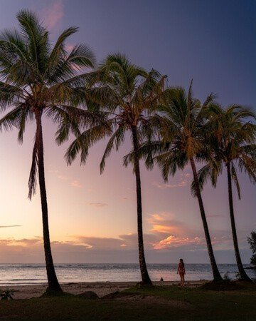 One of many postcard-worthy Kauai sunsets under tropical palms.