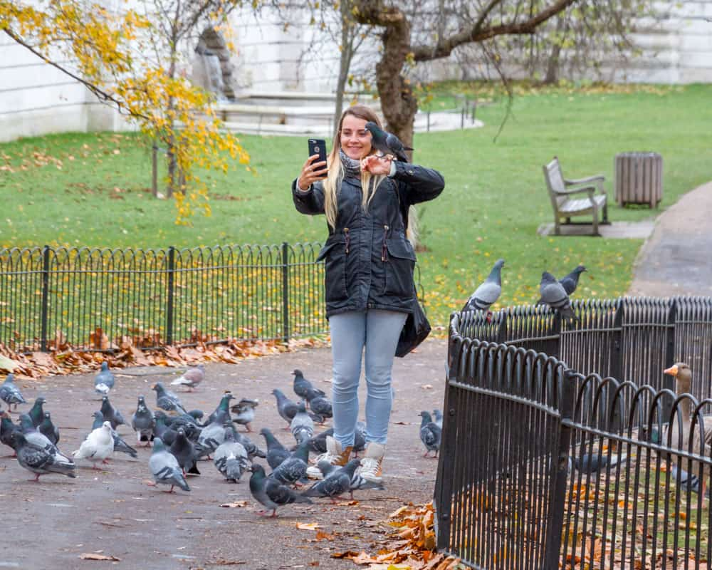A pigeon sat on a girls arm in St James's Park London while taking a selfie during 2 days in london