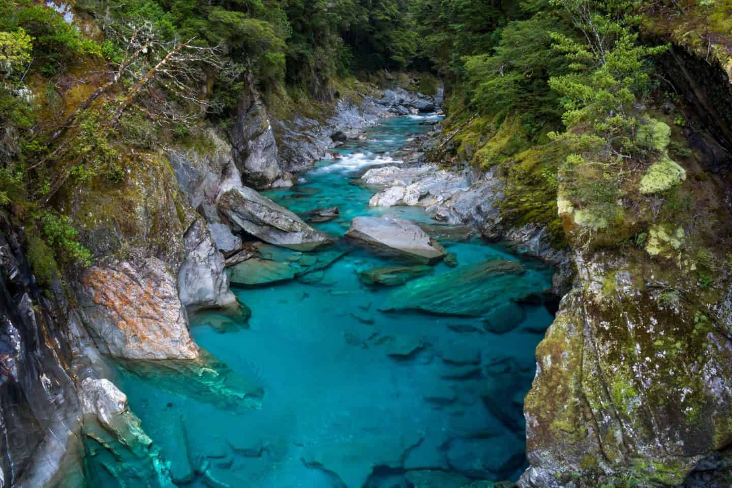 The Blue Pools Track is the highlight of Haast Pass.