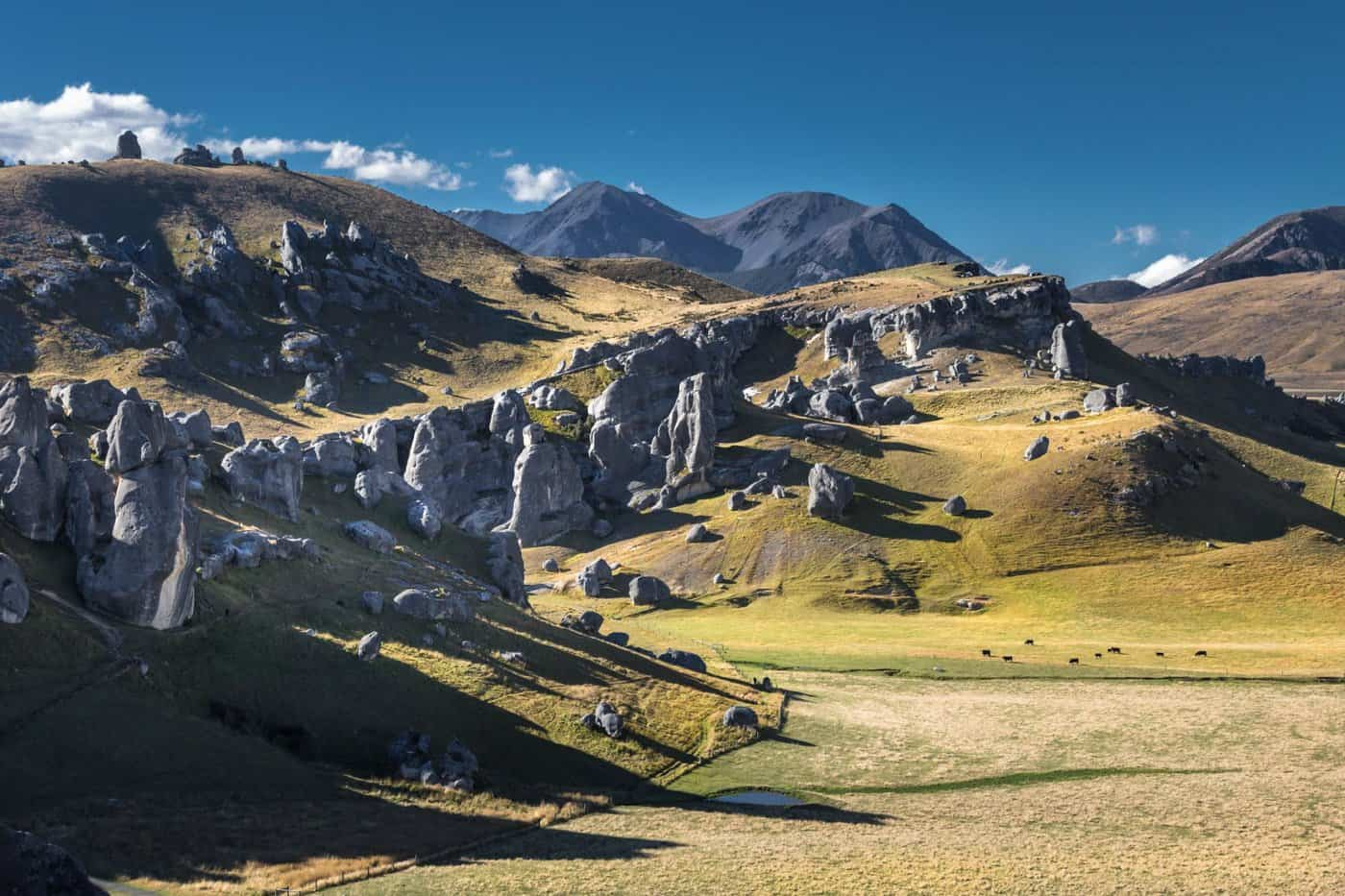 Stop by the rolling Castle Hills on the final day of you one week in New Zealand.