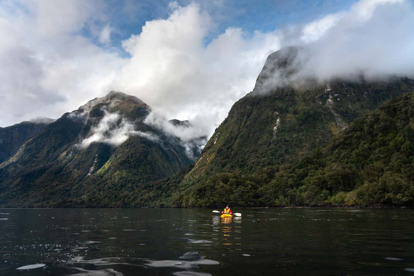 We genuinely recommend booking your Doubtful Sounds overnight cruise with Real Journeys.