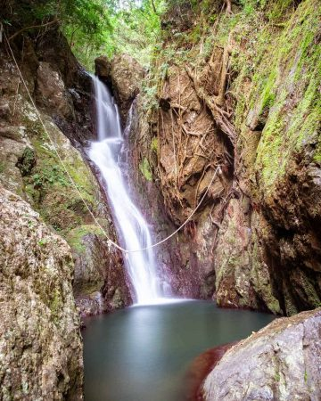 Fairy Falls provides a quiet oasis, complete with a rope swing, it is one of the closest Cairns waterfalls.