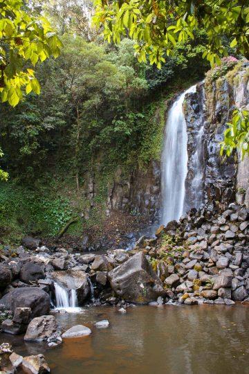 Mungalli Falls waterfall near Cairns