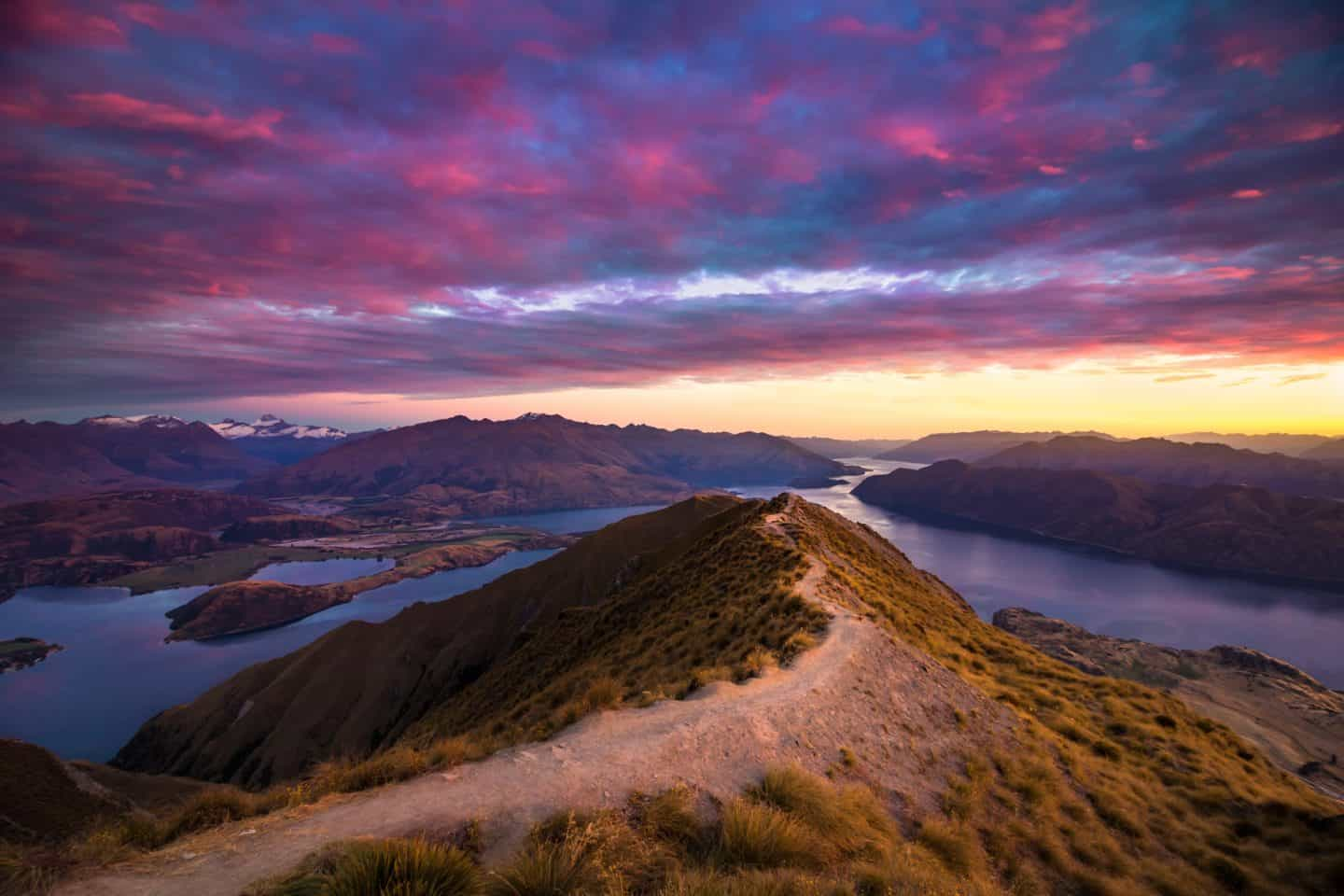 A crooked track leads the viewers eyes toward an incredible Roys Peak sunrise.