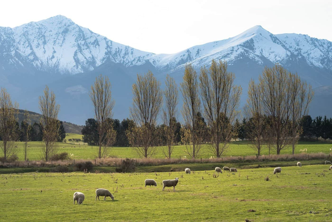 The Key is a region of beautiful, charming South Island countryside between Queenstown and Milford Sound.