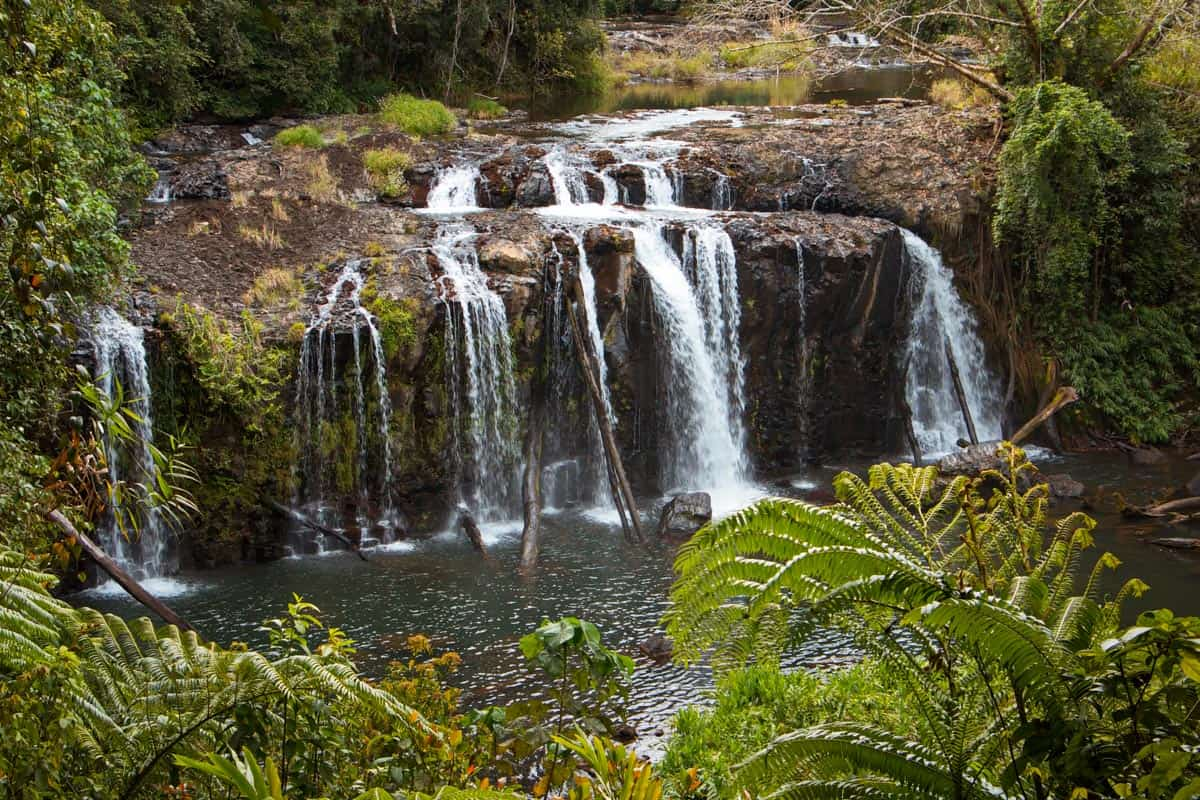 Wallicher Falls is one of the best waterfalls near Cairns