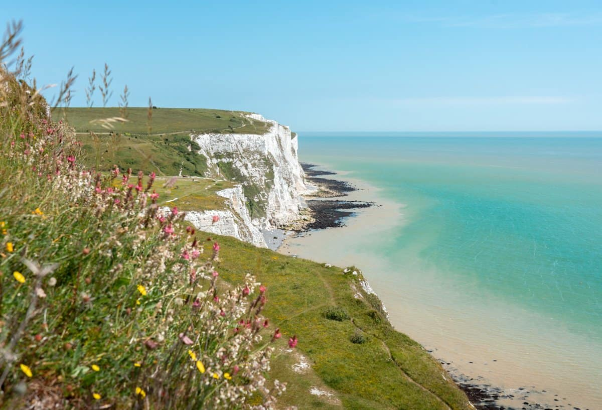 Wildflowers colour the foreground, with sweeping views across the grassland, the White Cliffs of Dover and azure waters of the English Channel