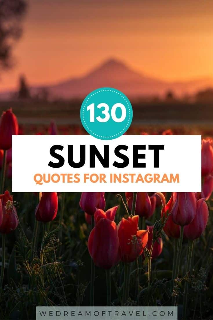 Looking for an Instagram caption for your sunset photos? Here are the best sunset captions for Instagram. Capture the beauty of sunset with these great quotes about sunset and sunrise.  sunset captions for instagram | short sunset captions | sunset captions for instagram short | sunset captions for instagram cute | sunset captions for instagram beach | sunset captions for instagram words | sunset captions for instagram inspiration | sunset captions for instagram posts | sunset captions photography | sunset quotes instagram caption