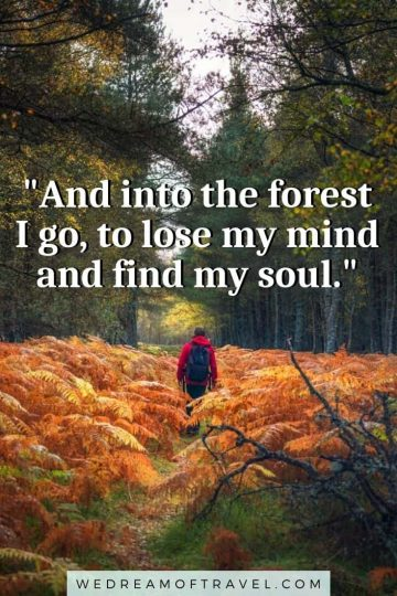 Looking for inspirational hiking quotes? Or Instagram captions about hiking for your next post? Here are my 120+ favorite quotes about hiking complete with images to fuel your wanderlust and get you motivated for that next hiking adventure. #hiking #hikingquotes #quotesabouthiking #hikinginstagramcaptions #travelquotes #adventurequotes #naturequotes