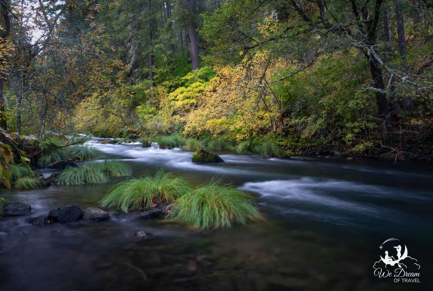 Photographing autumn colors on the Burney Creek Headqaters trail while hiking Burney Falls.