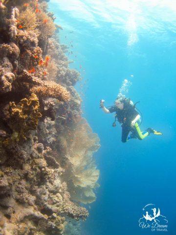 Scuba diving the Red Sea in Egypt was a dream destination