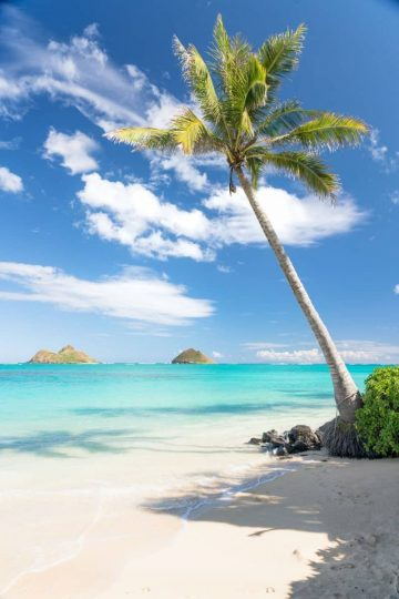 The postcard-perfect tropical paradise of Lanikai Beach, Oahu makes for a dream destination.