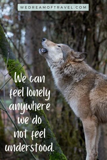 """Traveling lessons #13  """"We can feel lonely anywhere we do not feel understood"""" Text overlaying an image of a wolf howling."""