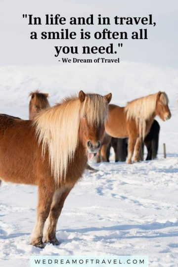 """Lessons from traveling #19  """"In life and in travel, a smile is often all you need."""" text overlaying a picture of an Icelandic horse in the snow poking his tongue out!"""
