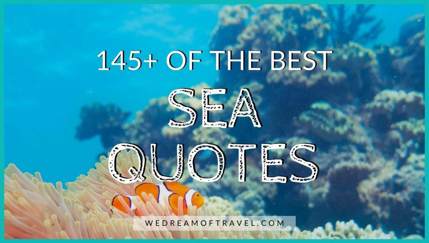Sea Quotes: 145+ Best Quotes About the Ocean blog cover photo.  Text overlaying an image of a clown fish in an anemone.