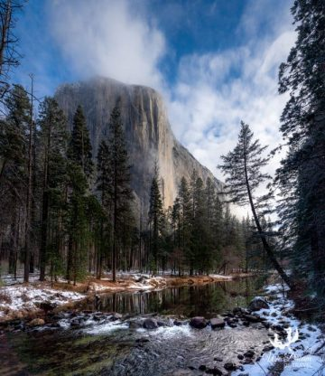 The Merced River adds a feeling of tranquility to Yosemite photography.