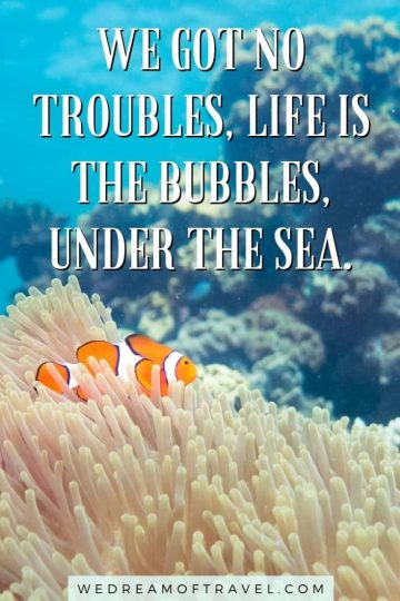 145+ best sea quotes and captions. From inspirational sea quotes to funny, short, clever captions - this full list of ocean quotes has everything you need for the perfect Instagram caption or to get you in the summer spirit. sea quotes | sea quotes inspirational | sea quotes summer | sea quotes instagram | sea quotes short | sea quotes funny | sea captions instagram | funny sea captions | ocean quotes | ocean captions