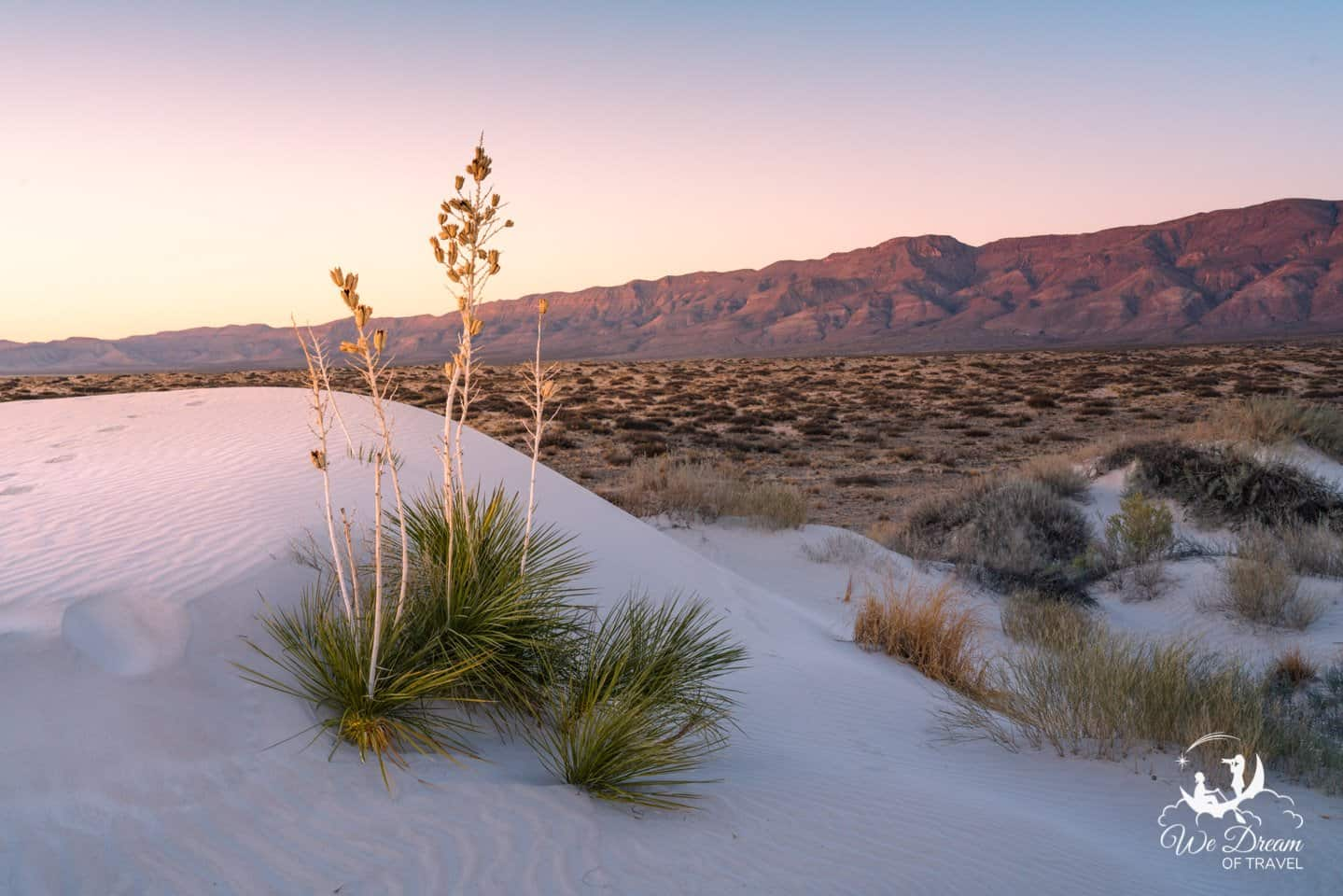 Golden Hour lights the Guadalupe Mountains from the sand dunes of Salt Basin Dunes.