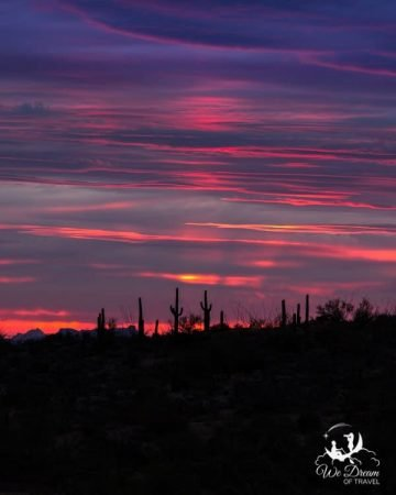 Crazy colored sky over distant cacti in Saguaro East National Park.