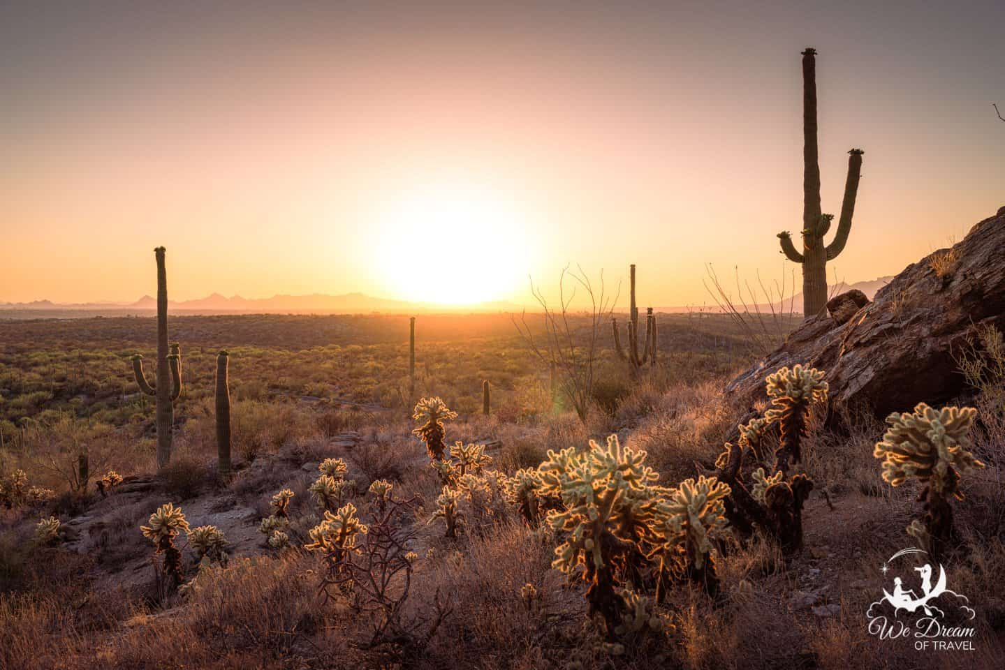 Sunset from Saguaro East Rincon Mountain District.