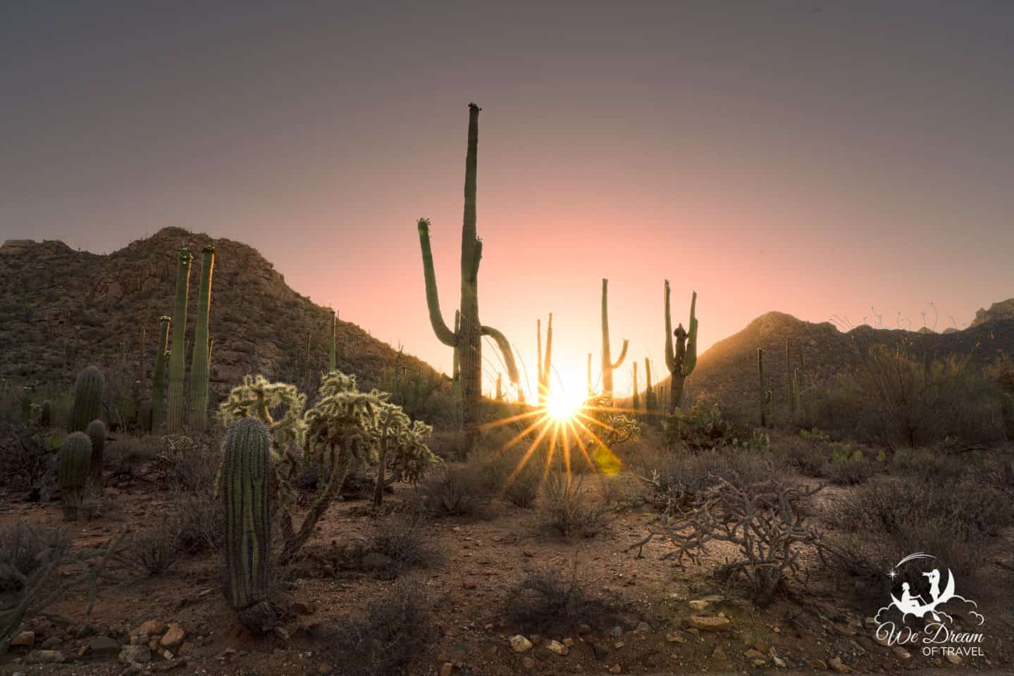The sun rises amongst the saguaro cacti from Sus Picnic Area in Saguaro West.