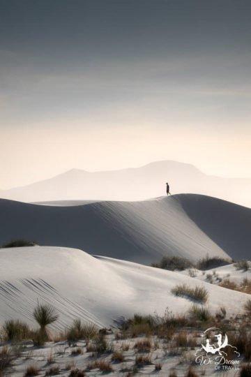 Wandering amongst the desert.