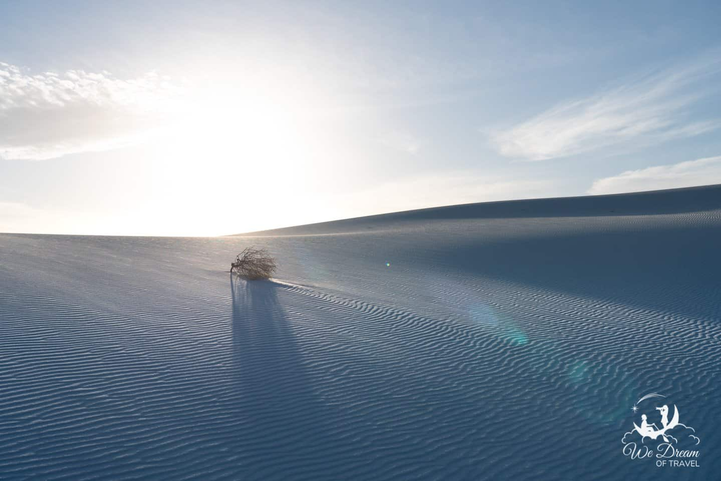 White Sands picture capturing the harsh wind and desolate landscape of the National Park.